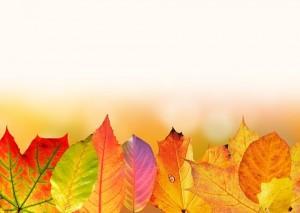 autumn-1649440__340